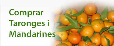 Comprar taronges i mandarines | Mami Taronges