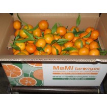 Mandarines Format familiar 15kg