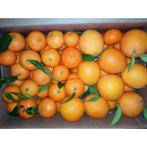 Combinados  Mandarinas - Naranjas Mesa 15 kg